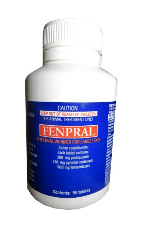 Fenpral All Wormer for Dogs 40kgs 50's